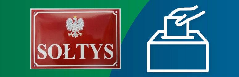 Wybory sołtysów i rad sołeckich